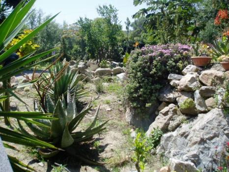 casa bruno  giardino