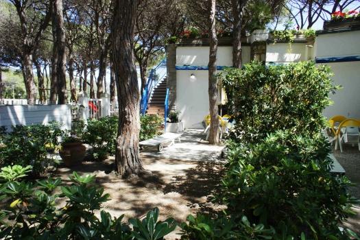 giardino retro con pineta.