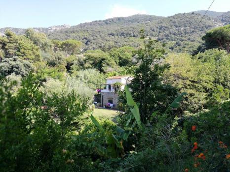 Villa Sant'Andrea con giardino e sorgente