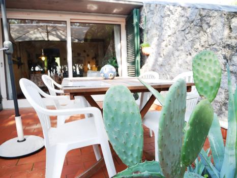 tavolo-con-cactus