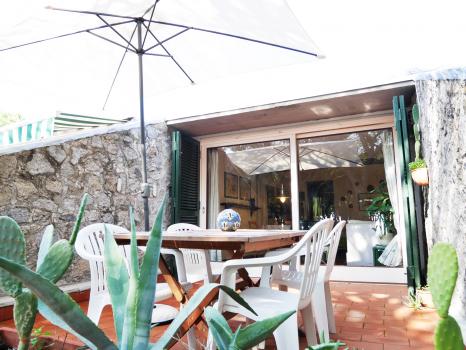 tavolo-con-cactus-esterno
