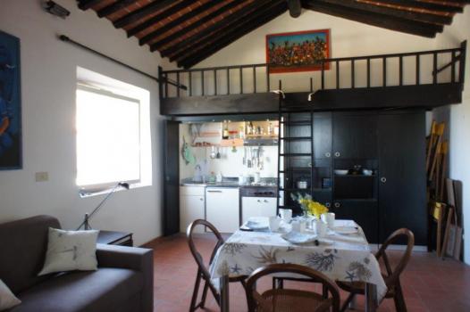 Wohnraum mit Kochecke und Hochbett