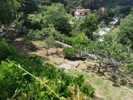 giardini e terreni (2)