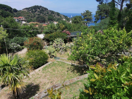 giardini e terreni (3)