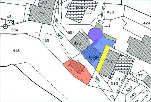 Annamaria Cat con zone apr21-6
